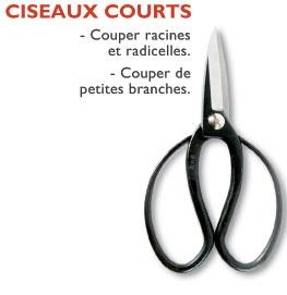 ciseauxcourts