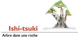 ishitsuki