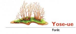 yoseue